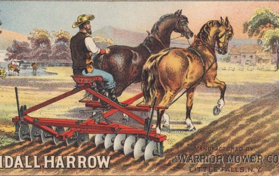 Randall Harrow Farm Draft Horse Nice 1800's Warrior Mower Advertising Trade Card